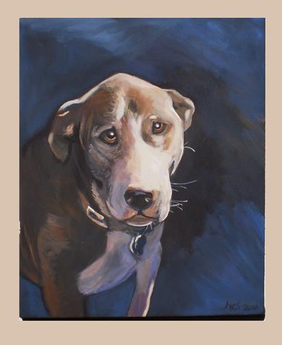 Dog portrait in Alexandria VA