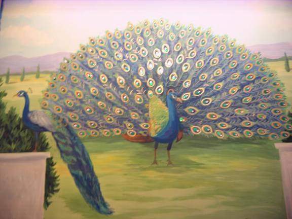 peacock_muralimg_0761.jpg